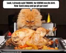 thanksgiving memes popsugar tech
