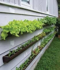 Small Backyard Vegetable Garden Ideas Triyae Com U003d Backyard Vegetable Garden Layout Various Design