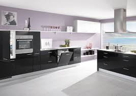 Black Kitchen Cabinets Images 3161 Best Kitchen Images On Pinterest Kitchen Cabinets Kitchen