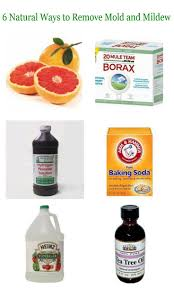 Kill Carpet Mold 58 Best How To Kill Black Mold Images On Pinterest Cleaning