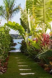 Tropical Gardening Ideas Great Tropical Banana Tree Gardening Patio Ideas Patio Design Ideas