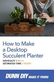 1646 best succulents images on pinterest succulent gardening