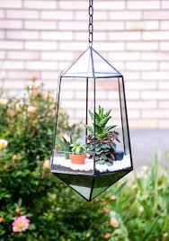 25 unique hanging glass terrarium ideas on pinterest hanging