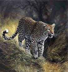 johan hoekstra wildlife art prints available fine art prints