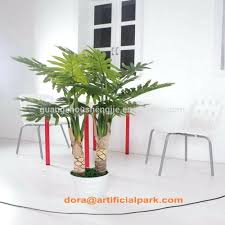 100 office desk plant desk best small plants for office