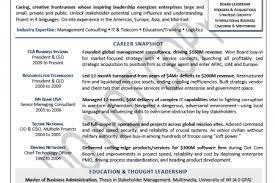 It Director Resume Examples by Ciso Resume Resume Cv Cover Letter