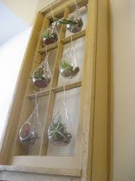 chuck does art diy hanging window frame tillandsia air plant