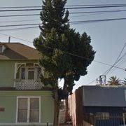 inexpensive tree services 79 photos 109 reviews tree