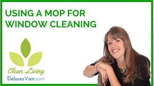 norwex cleaning outside windows spring cleaning tips streak