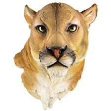 mountain lion statue mountain lion mount wall statue bust home kitchen