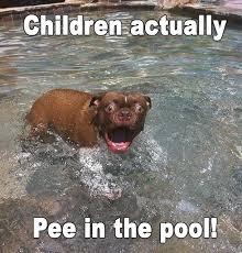Sudden Realization Meme - sudden realization dog meme guy