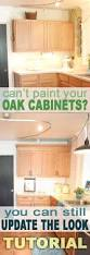 updating oak kitchen cabinets without painting trends with old