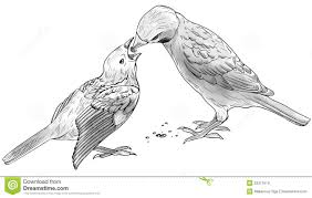 sparrow bird drawings