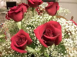 jordan 23 forever roses dwc exchange blog
