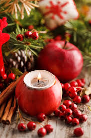 70 best χριστουγεννιατικεσ ιδεεσ με μηλα images on