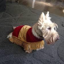 Sheep Dog Costume Halloween Footstool Beauty Beast Dog Halloween