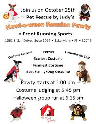 boxer dog rescue florida welcome to pet rescue by judy