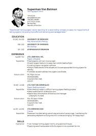 resume pdf template free pdf resume builder how to create curriculum vitae sle