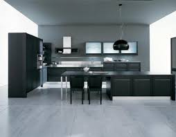 this is a very sleek kitchen the dark colors makes it look even