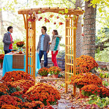 Fall Patio Fall Party Projects