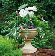 Plants For Patios In The Shade 35 Beautiful Container Gardens Midwest Living