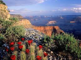 national parks images Usa national parks images usa national parks hd wallpaper and jpg