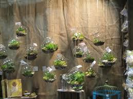 decor glass terrarium containers teardrop hanging terrarium