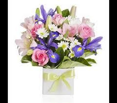 flower delivery utah florists flowers in ut absolutely flowers