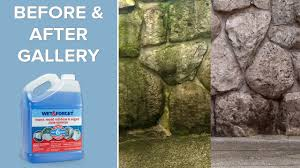 Moss Cleaner For Patios Wet And Forget Outdoor Clean Any Exterior Surface Youtube