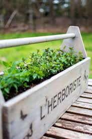 197 best gardening ideas images on pinterest gardening plants