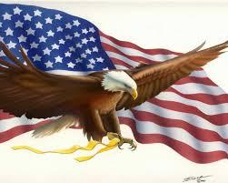 Bald Eagle On Flag American Flag Bald Eagle Symbols Desktop Wallpaper Hd For Mobile