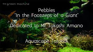 Takashi Amano Aquascaping Techniques Aquascape By James Findley Pebbles