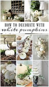 best 25 white pumpkin decor ideas on rustic