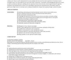 Operations Manager Resume Sample by Business Operations Manager Resume Executive Director Resume