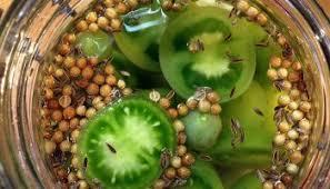 comment cuisiner les tomates vertes comment fermenter les petites tomates cerises ni cru ni cuit