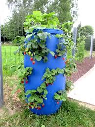 comment fabriquer un arbre a chat comment réaliser une tour a fraisiers avec un fût bleu un tonneau
