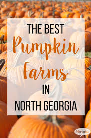 Pumpkin Farms In Wisconsin Dells by 61 Best All We Travel Images On Pinterest Travel Tips Travel