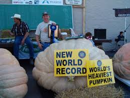 2017 world record 2323 7 pound giant pumpkin pictures from