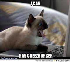 Meme Cheezburger - i can has cheezburger meme generator mne vse pohuj