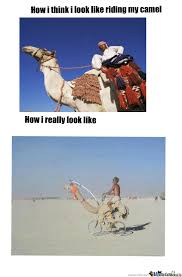 Camel Memes - riding my camel by kalif meme center