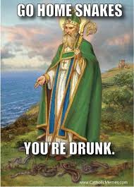 St Patricks Day Funny Memes - textplus memed st patrick s day edition welcome to