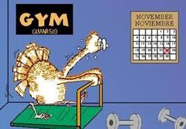 26 turkey at the thanksgiving pmslweb
