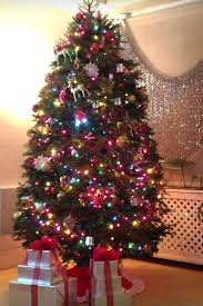 where can i find a brown christmas tree carey and kids out christmas tree