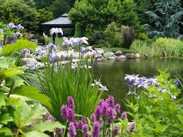 Landscape Nurseries Near Me by Meadows Farms Landscaping Garden Centers U0026 Nurseries In