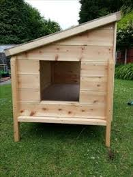Fox Proof Rabbit Hutches Single Rabbit Hutch Handmade By Boyles Pet Housing With A Rabbit