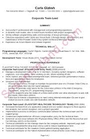 Resume Examples It by Resume Sample For A Corporate It Team Lead Susan Ireland Resumes