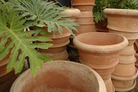 planters u0026 pots eye of the day garden design center