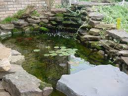 Backyard Pond Ideas With Waterfall Ideas 29 Stunning Backyard Pond Ideas Backyard Ponds Ideas