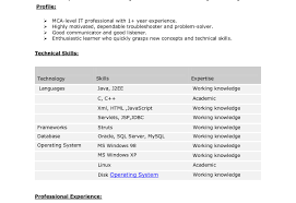 java developer resume java developer resume java developer resume sles java resume