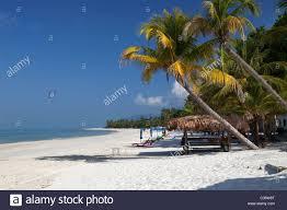 dream tropical beach at pantai cenang on langkawi malaysia 16